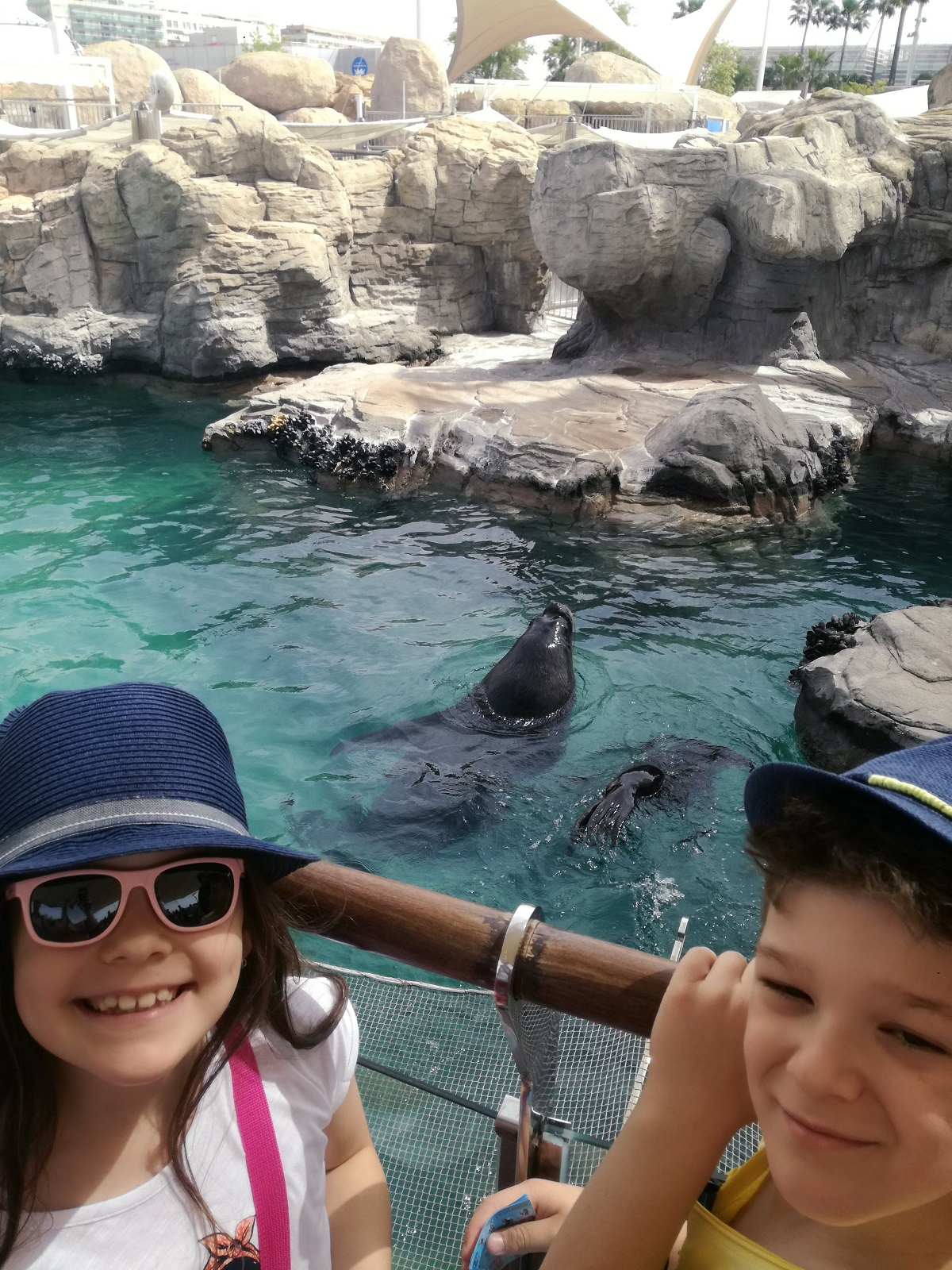 Copii la Oceanograf Valencia